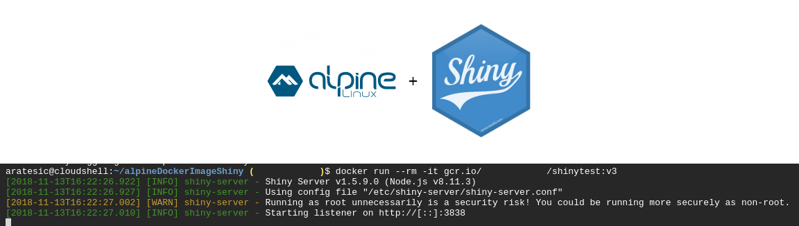 Shiny Alpine Docker Run